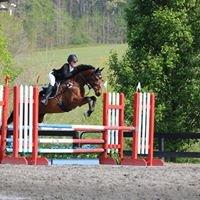 North Atlanta Equestrian