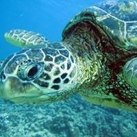 Makana O Kauai Private Scuba Adventures