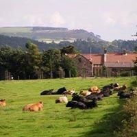 Spylaw Farm
