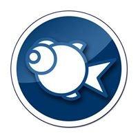 Fish Media