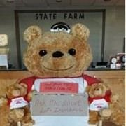 State Farm - Troy Herndon Agency