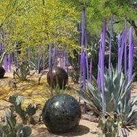 Desert Botanical Gardens Luminarias Chihuly Exhibit