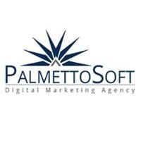 PalmettoSoft Internet Marketing