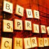 Blue Spring Chiropractic