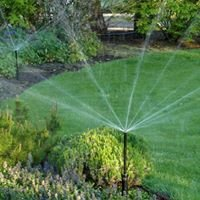 Creative Irrigation & Lighting, Inc.