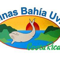 Cabinas Bahia Uvita