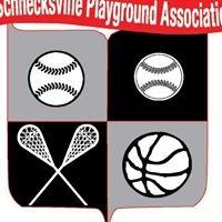 Schnecksville Playground Association