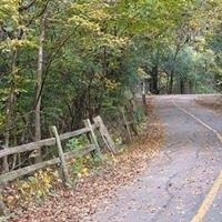 Bemis Woods South