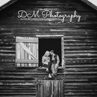 DM - Dolphin Multimedia Video & Photography
