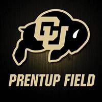 Prentup Field