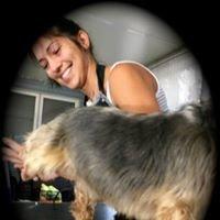 Funk N Fur Pet Grooming