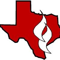 Professionals of Texas Fire & Safety, Inc.