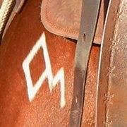 Diamond-McNabb Ranch Horses