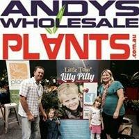 Andys Wholesale Plants