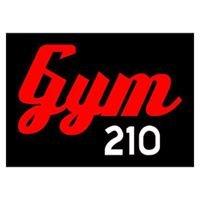 GYM 210