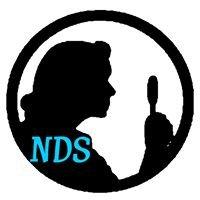 Nancy Drew Sleuths