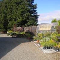 Redwood Spring Gardens