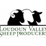 Loudoun Valley Sheep Producers Association