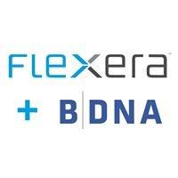 BDNA Corporation