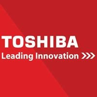 ToshibaSurveillance