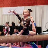 Freehold Elite Gymnastics