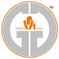 Gorilla Grass