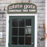 White Gate Christmas Tree Farm
