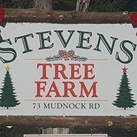 Stevens Tree Farm