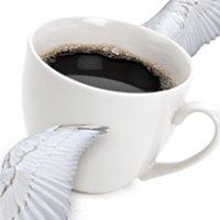 Joe To Go Coffee Service