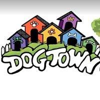 DogTown Daycare