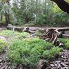 Paulding Soil & Water Conservation District