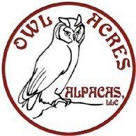 OWL Acres Alpacas