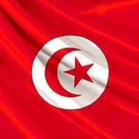 Enseignement supérieur et recherche scientifique en Tunisie