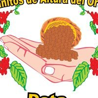 Micro Beneficio Granitos de Altura del Ortíz