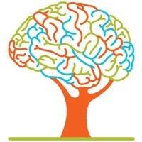 Brain Health Institute-Healthy Within