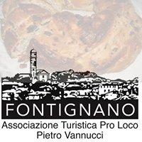 Pro Loco Fontignano