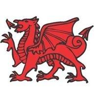 Village Of Wales