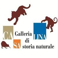Museo di Storia Naturale di Casalina - CAMS