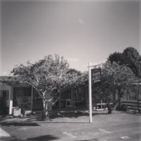 Daily Donut, Ballance Street, Gisborne NZ