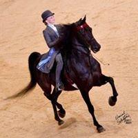 Equitate, LLC
