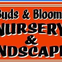 Buds & Blooms Nursery & Landscaping