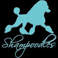 Shampoodles Grooming, LLC