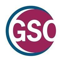 GSO - German Scholars Organization e.V.