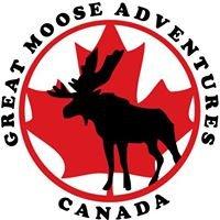 Great Moose Adventures