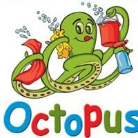 Octopus Car Wash & Express Detail Center