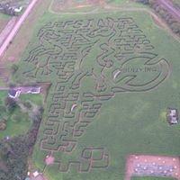 RiverBreeze Corn Maze
