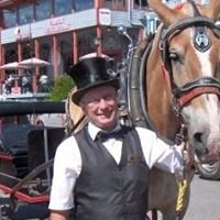 Trot In Time Buggy Rides Ltd.