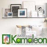 Marcos Kamaleon