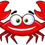The Sandy Crab