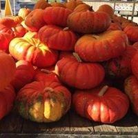 Wayne County Farmers Market